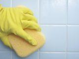 Как защитить ванную от грибка: профилактика